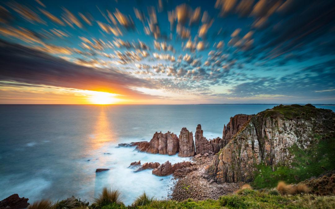 The Best Wildlife Spots in Victoria